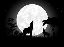 Beauty Wolf scream silhouettes with Giant Moon background Royalty Free Stock Photography