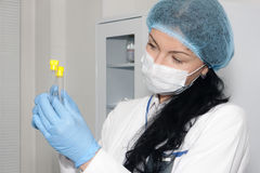 Beauty woman doctor checking test tubes. Beauty doctor checking test tubes Royalty Free Stock Images