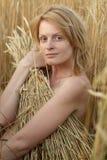 Beauty woman on field Stock Photos