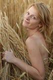 Beauty woman on field Stock Photo