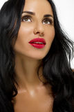Beauty Woman With Long Black Hair. Royalty Free Stock Photo