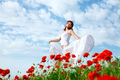 Beauty woman in poppy field Stock Image