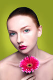 Beauty woman portrait bright backround holding. Gerbera flower Royalty Free Stock Photo