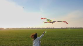 Beauty woman running with kite on green field at sunset. Woman with flying colorful kite over clear blue sky and shining sun. Freedom concept. Healthy stock video footage