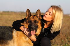 Beauty woman and shepherd. On field Royalty Free Stock Photos