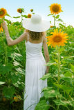 Beauty woman in sunflower Stock Photos