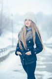 Beauty woman in the winter scenery Royalty Free Stock Images