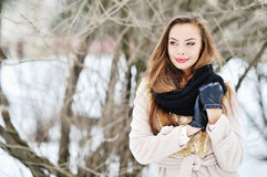 Beauty woman in the winter scenery. Copy space Stock Images