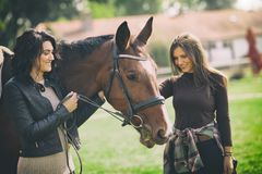two women veterinarian and owner enjoying with a horse outdoors at ranch royalty free stock image