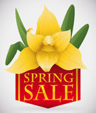 Beauty Yellow Orchid on top of Red Ribbon with Golden Spring Sale Text, Vector Illustration Stock Photos