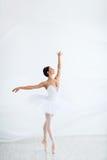 Beauty. Young ballerina dancing in studio stock photography