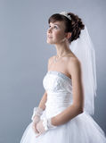 Beauty young bride Royalty Free Stock Photo