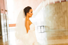 Beauty young bride alone Royalty Free Stock Image