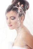 Beauty young bride with beautiful makeup and hairstyle in veil Royalty Free Stock Photo