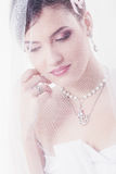 Beauty young bride Stock Photography