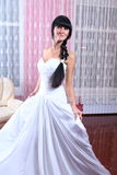 Beauty young bride dressed in... Stock Photography