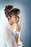 Beauty young bride dressed in  wedding dress Royalty Free Stock Photos
