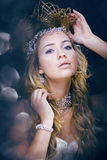 Beauty young snow queen in fairy flashes Stock Photos
