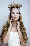 Beauty young snow queen in fairy flashes Stock Photography