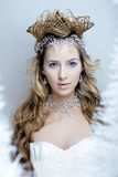Beauty young snow queen in fairy flashes with hair. Crown on her head close up frozen lashes, snowmaiden cold winter Stock Images