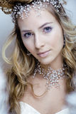 Beauty young snow queen in fairy flashes with hair. Crown on her head close up frozen lashes, snowmaiden cold winter Stock Photography