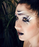 Beauty young woman with creative make up like zebra Stock Images