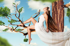 Beauty young woman on tree in the sky Royalty Free Stock Photography