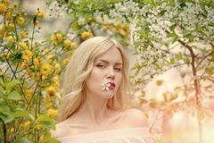 Beauty, youth and freshness in spring, easter. Woman in blossoming magnolia flower, spring. Skincare and healthy lifestyle, ecology. Sensual woman in magnolia Stock Images