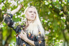 Beauty and Youth Lifestyle Concept: Portrait of Young Caucasian. Beauty Concept: Portrait of Young Caucasian Blond Woman Standing in Park by the Blooming Tree Royalty Free Stock Photo