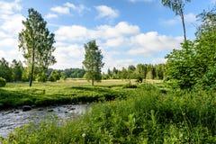 beautyful φως πρωινού πέρα από το δασικό ποταμό Στοκ Φωτογραφία