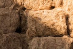 Beautyful background and texture straw background texture light. Straw background texture light background Stock Photo