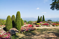 The beautyful garden and the blue sky Stock Images