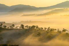 Da lat, lam dong, viet nam- feb 12, 2017: beautyful landscape of da lat city, a small vietnamese pagoda in fog and the pine hill. Beautyful landscape of da lat royalty free stock photos