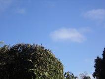 Beautyful niebo w madery wyspie Fotografia Stock