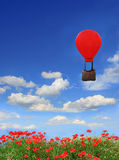 Beautyful red poppy field and blue sky, floating hot-air balloon Royalty Free Stock Images