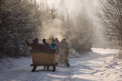 Beautyful sleigh in the winter trough the forest. stock photo
