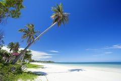 beautyful strand Royaltyfria Foton