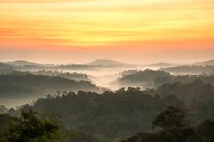 Beautyful sunrise in the mountains landscape forest Royalty Free Stock Photo