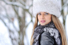 Beautyful woman in the winter Stock Photography