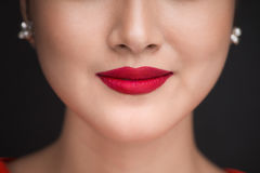 beauvoir 关闭美丽的妇女嘴唇看法有红色暗淡嘴唇的 免版税库存照片