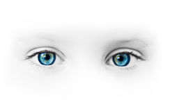 Beaux œil bleu Image stock