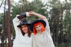 Beaux amis dans la forêt Photo libre de droits