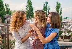 Beaux amis de femmes ayant l'amusement à la partie de célibataire Images libres de droits