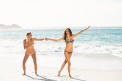 Beaux amis enthousiastes posant sur la plage Image stock