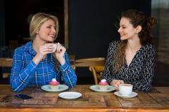 Beaux amis féminins ayant le café tout en parlant dans le cafétéria Photographie stock
