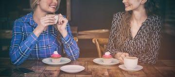 Beaux amis féminins ayant le café tout en parlant dans le cafétéria Image libre de droits