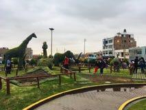 Beaux animaux en parc dans Tacna Photo stock