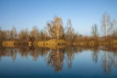 Beaux arbres d'automne réfléchissant sur la surface douce de l'eau Jour chaud d'automne sur le lac images libres de droits