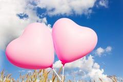 Beaux ballons de modèle de coeur de rose de couplesweet Photos libres de droits