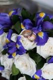 Beaux bouquet et anneaux de mariage Images stock